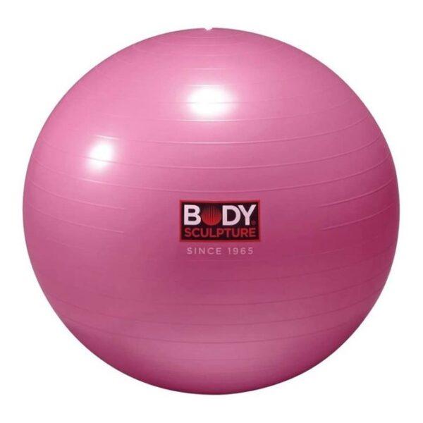 Anti Burst Gym Ball rose